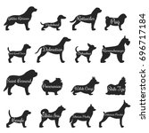 Isolated Purebred Dogs Profile...