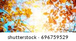 autumn landscape. autumn oak... | Shutterstock . vector #696759529