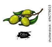 olive branch. hand drawn vector ...   Shutterstock .eps vector #696778015