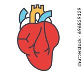 heart anatomy  cardiology... | Shutterstock .eps vector #696829129