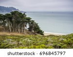 Cypress trees and shrubs on the coast of the Pacific Ocean on a foggy day, Lands End, San Francisco, California