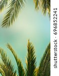 palm trees on the background of ... | Shutterstock . vector #696852241