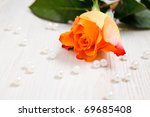 Beautiful rose with pearls as a gift for Valentine's day - stock photo