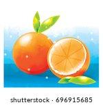 vector illustration of orange   Shutterstock .eps vector #696915685