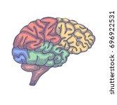 engraving brain illustration ...   Shutterstock .eps vector #696922531