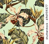 vintage seamless tropical... | Shutterstock . vector #696959377