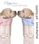 Puppy Love  Sleeping Puppies I...