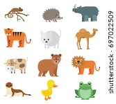 animal  wildlife animal  farm... | Shutterstock .eps vector #697022509