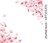 pink flower flying petals... | Shutterstock .eps vector #697151551