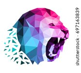multi colored lion head created ... | Shutterstock .eps vector #697163839