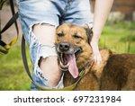 pooch | Shutterstock . vector #697231984