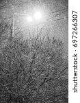 winter street lamp at night | Shutterstock . vector #697266307