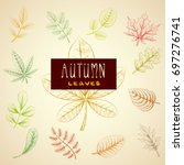collection colorful autumn... | Shutterstock .eps vector #697276741