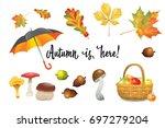 set of autumn objects. pumpkins ... | Shutterstock .eps vector #697279204