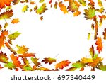 fall leaves in the wind on... | Shutterstock . vector #697340449