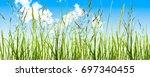 grass blades  meadow  blue sky | Shutterstock . vector #697340455