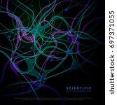 a model of neural system... | Shutterstock .eps vector #697371055