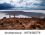isla incahuasi  isla del... | Shutterstock . vector #697438279