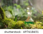 magic potion in bottle in forest | Shutterstock . vector #697618651