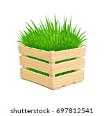 Wooden Box With Green Grass....