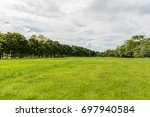 green tree and green grass in... | Shutterstock . vector #697940584