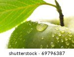Fresh Green Wet Apple With Leaf ...