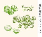 brussels sprouts on a white... | Shutterstock .eps vector #698029684