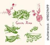 Green Peas And Pea Pod Close U...