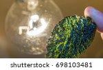 moldavite   a rare mineral of... | Shutterstock . vector #698103481