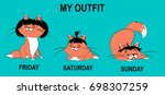 cat fanny outfit post | Shutterstock .eps vector #698307259