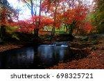 maple | Shutterstock . vector #698325721