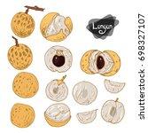 hand drawn sketch style longan... | Shutterstock .eps vector #698327107
