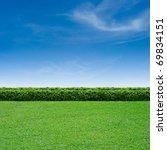 green grass and summer blue sky | Shutterstock . vector #69834151