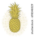 hand drawn decorative pineapple.... | Shutterstock .eps vector #698348329
