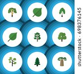 flat icon nature set of forest  ... | Shutterstock .eps vector #698376145