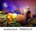 photo montage of halloween... | Shutterstock . vector #698401219