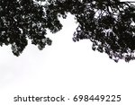 the silhouette of a leaf on a... | Shutterstock . vector #698449225