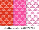 set of floral ornaments. red... | Shutterstock .eps vector #698529205