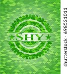 shy green emblem with triangle... | Shutterstock .eps vector #698531011