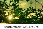 a sunset behind the tree   Shutterstock . vector #698576275