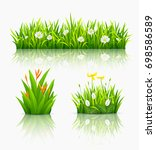 beautiful flowers with green... | Shutterstock .eps vector #698586589