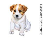 Stock photo puppy jack russell terrier isolated on white background watercolor illustration picture clip art 698641351