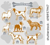 dogs breeds of the world vector ... | Shutterstock .eps vector #698957947