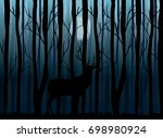 deer in the night forest vector ...