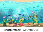 the beauty of underwater life... | Shutterstock .eps vector #698981011