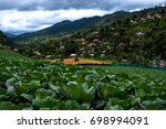 agriculture on the highland by... | Shutterstock . vector #698994091