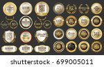 luxury gold and silver design... | Shutterstock .eps vector #699005011