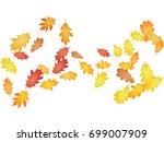 oak leaves flying confetti... | Shutterstock .eps vector #699007909
