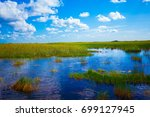 everglades national park.... | Shutterstock . vector #699127945