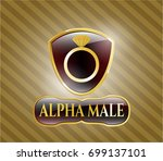 shiny emblem with diamond ring ... | Shutterstock .eps vector #699137101